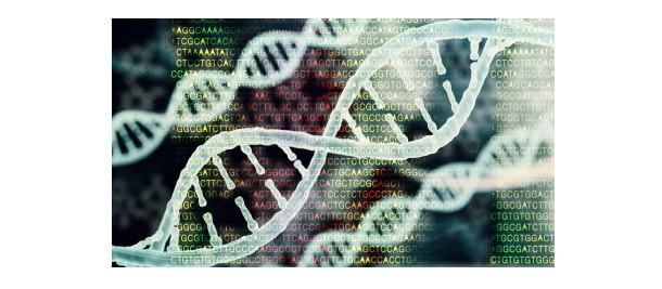bioinformático